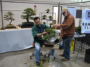 English: Maker Faire Bonsai booth